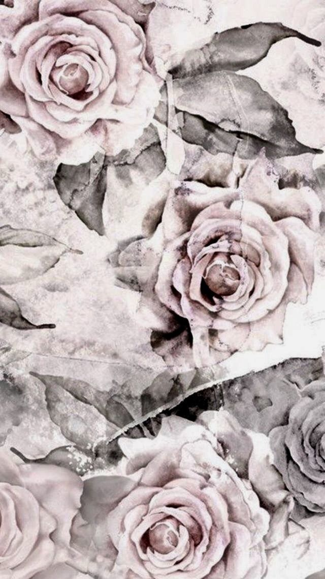 Monochrome Photography White Black And White Garden Roses Rose Flower Phone Backgrounds Vintage Grey Wallpaper Iphone Vintage Phone Wallpaper