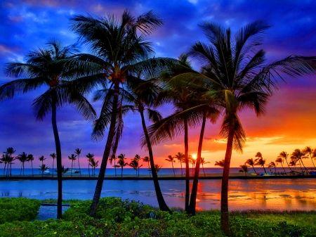 Tropical Sundown Desktop Nexus Wallpapers Scenery Photography Big Island Sunset Beautiful wallpaper island sunset