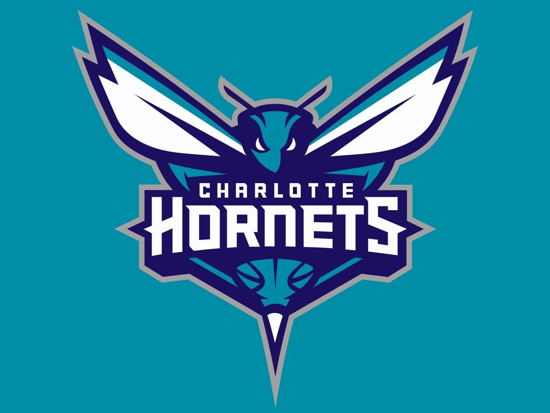 Image result for Charlotte Hornets team logo