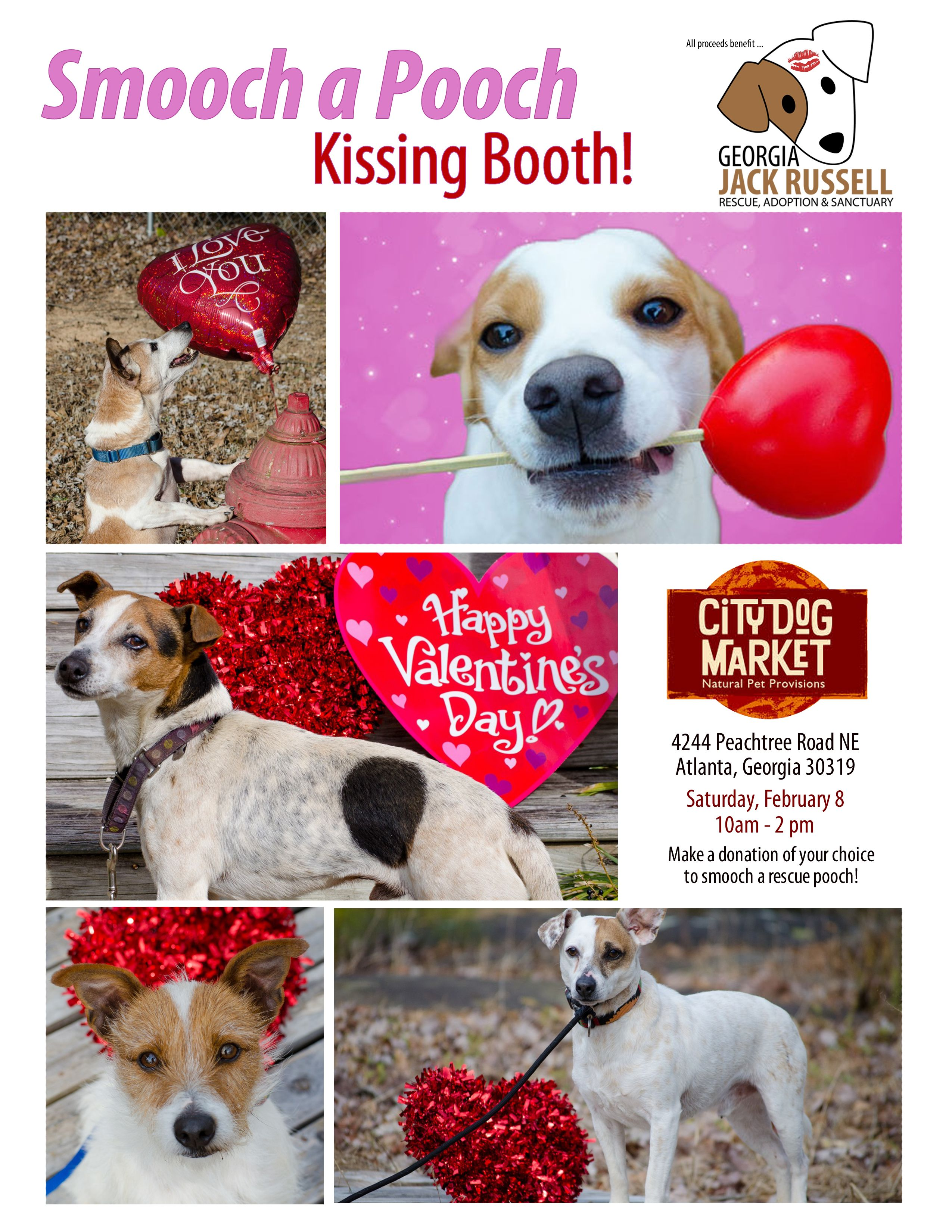Smooch a Pooch Flyer Rescue dogs for adoption, Kissing