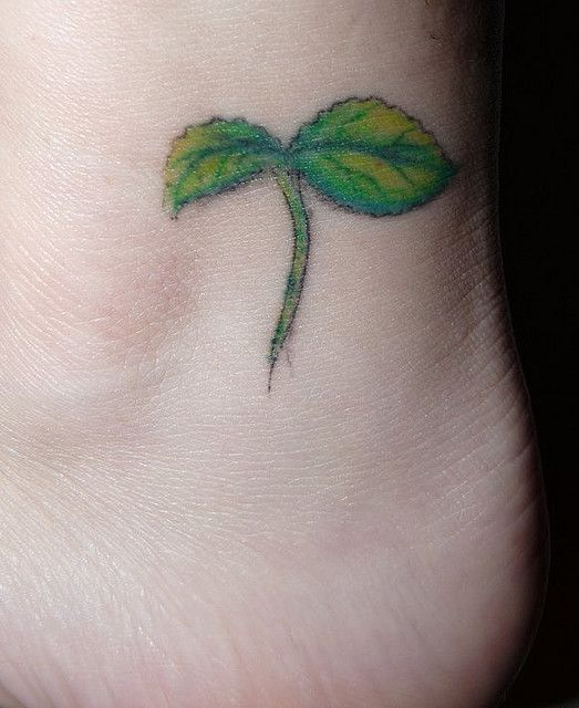 Sprout Tattoo
