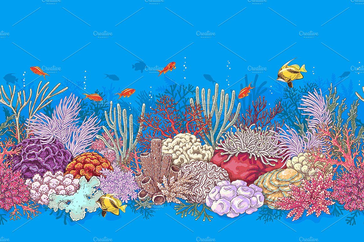 10++ Coral reef images clipart ideas in 2021