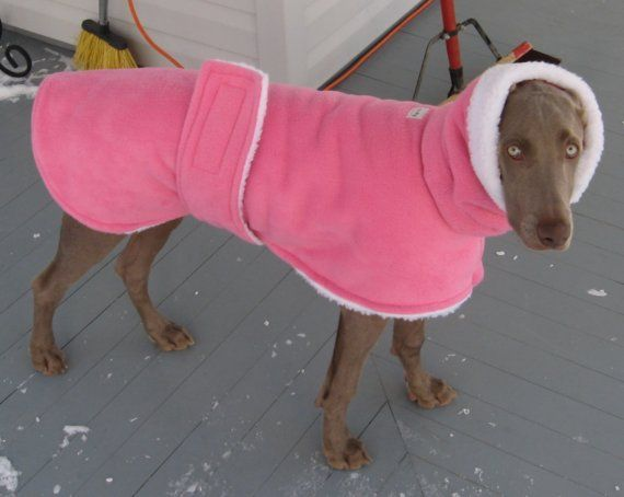 so cute! I should get this for winter (since it gets so