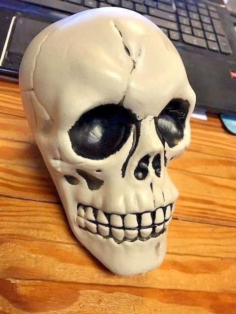 Human Skull Halloween Decoration Realistic Gothic Mythical Replica - skull halloween decorations