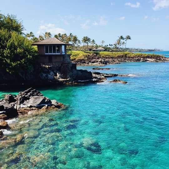 Maui, Kapalua.    Wanna go there!!!!