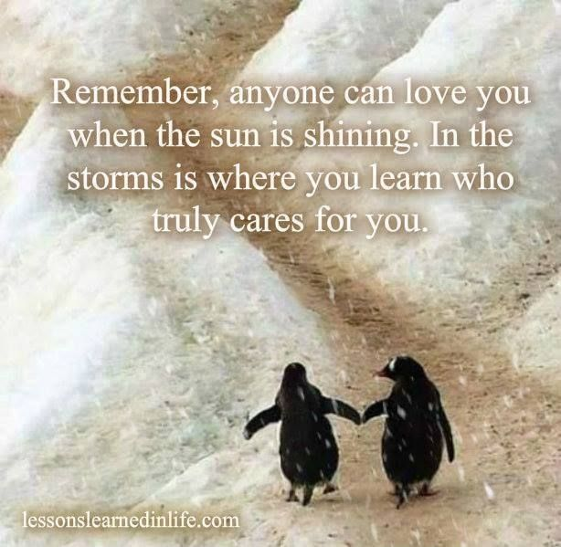 Penguin Love Quotes Extraordinary Pin By Kelly Coleman On Quotes Pinterest Thoughts