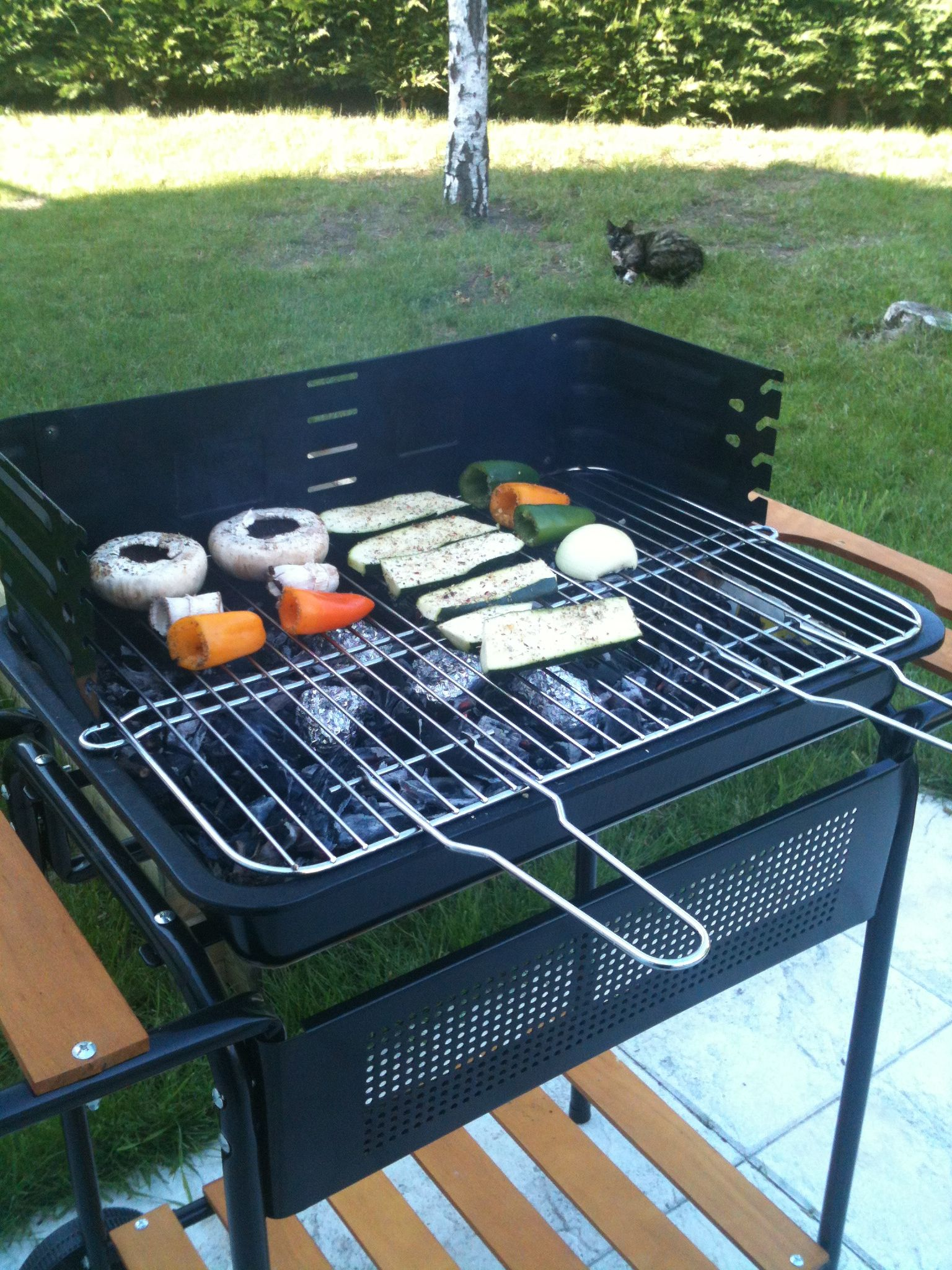 Vegetables barbecue