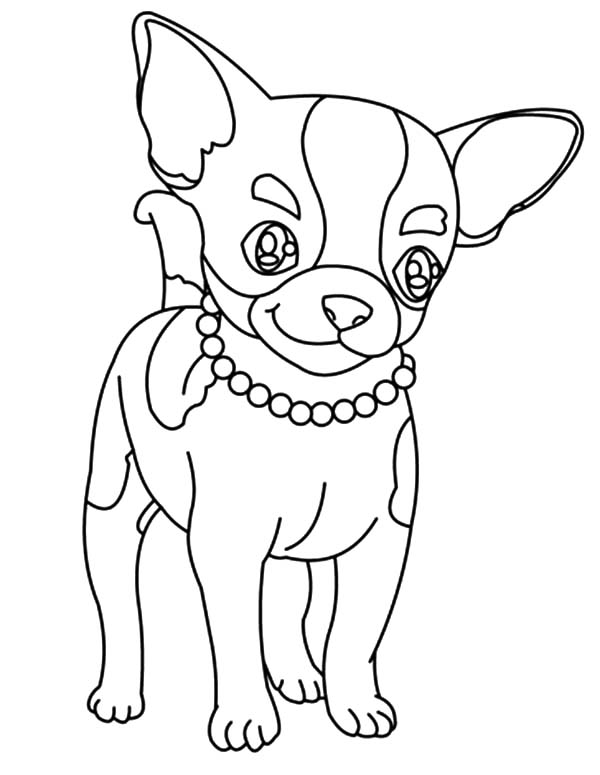 Beautiful Necklace Chihuahua Dog Coloring Pages Netart Puppy Coloring Pages Dog Coloring Page Horse Coloring Pages