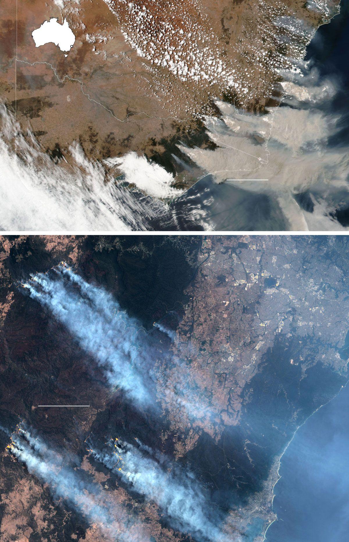 Here's Where Australia's Destructive Wildfires Are Burning