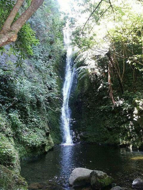 Lulumahu Falls Valley Nuuanau Oahu Hawaii Stock Image