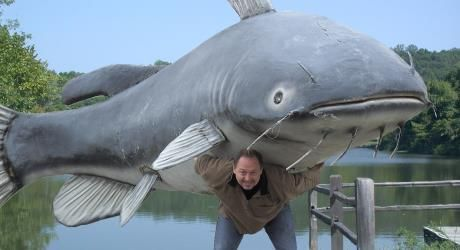 River monsters lake of the ozarks giant catfish giant for Lake of the ozarks fishing