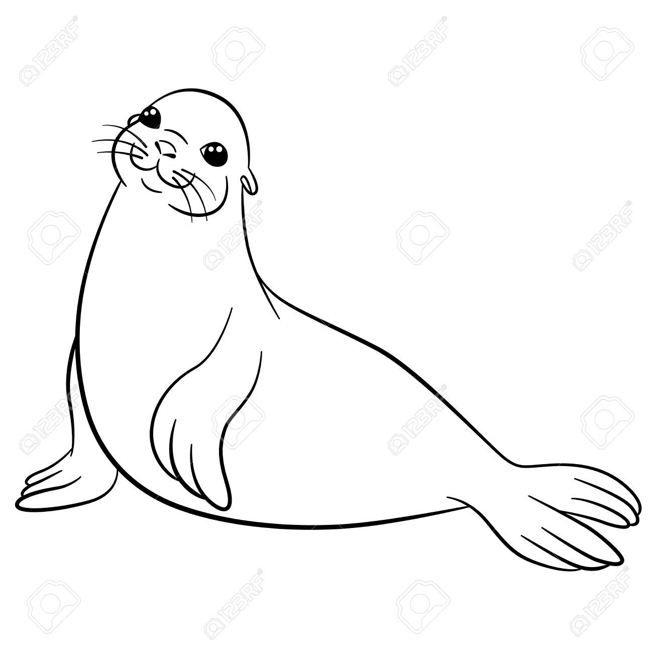 How To Draw A Seal Google Search Animal Drawings Drawings Portrait Drawing