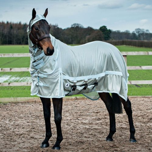 Derby House Pro Fly Rug Horses Horse Rugs
