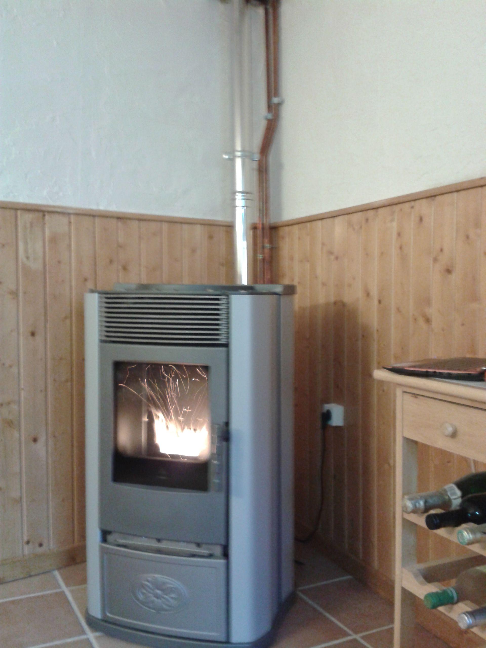 Termoestufa de pellet edilkamin ecoidro para calefacci n for Estufa lena calefaccion radiadores