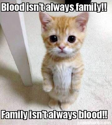 Meme Creator Blood Isnt Always Family Family Isnt Always Blood