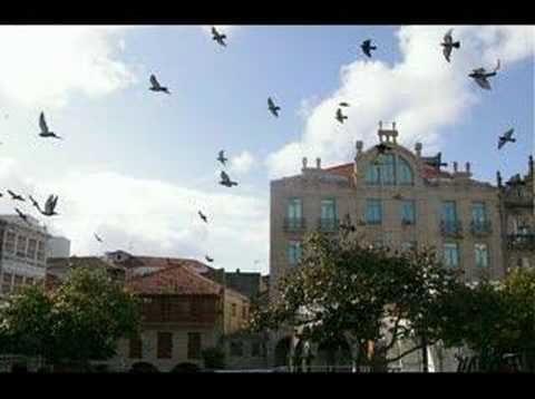 ▶ Pontevedra.100 fotos de Pontevedra -