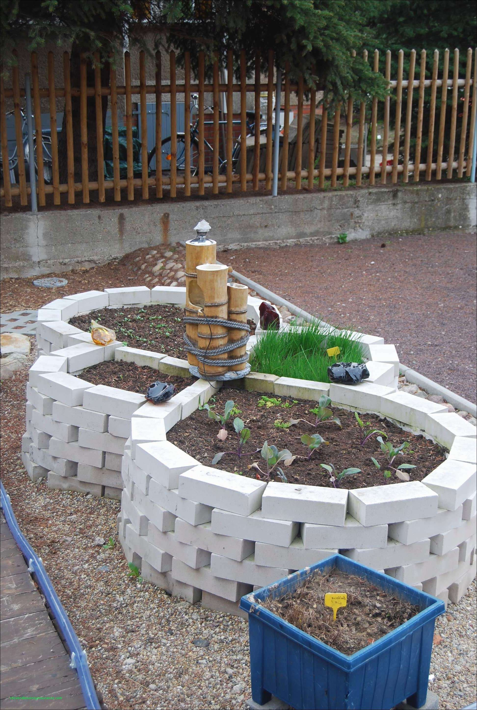Frisch 41 Für Marder Im Garten Was Tun Garden Ideas Garden