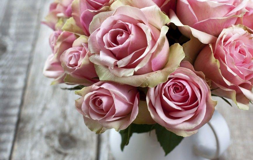 7 Trucos Para Que Las Flores Luzcan Mejor Y Duren Más Flowers Rose Beautiful Roses