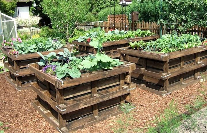 pallet raised garden beds 20 wonderful pallet ideas