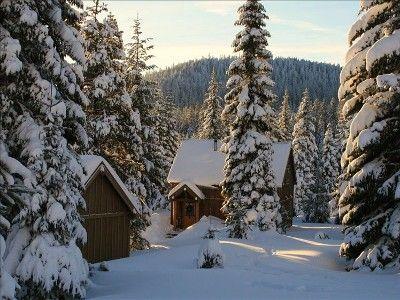 Cozy Cabin To Rent Near Ashland #Oregon