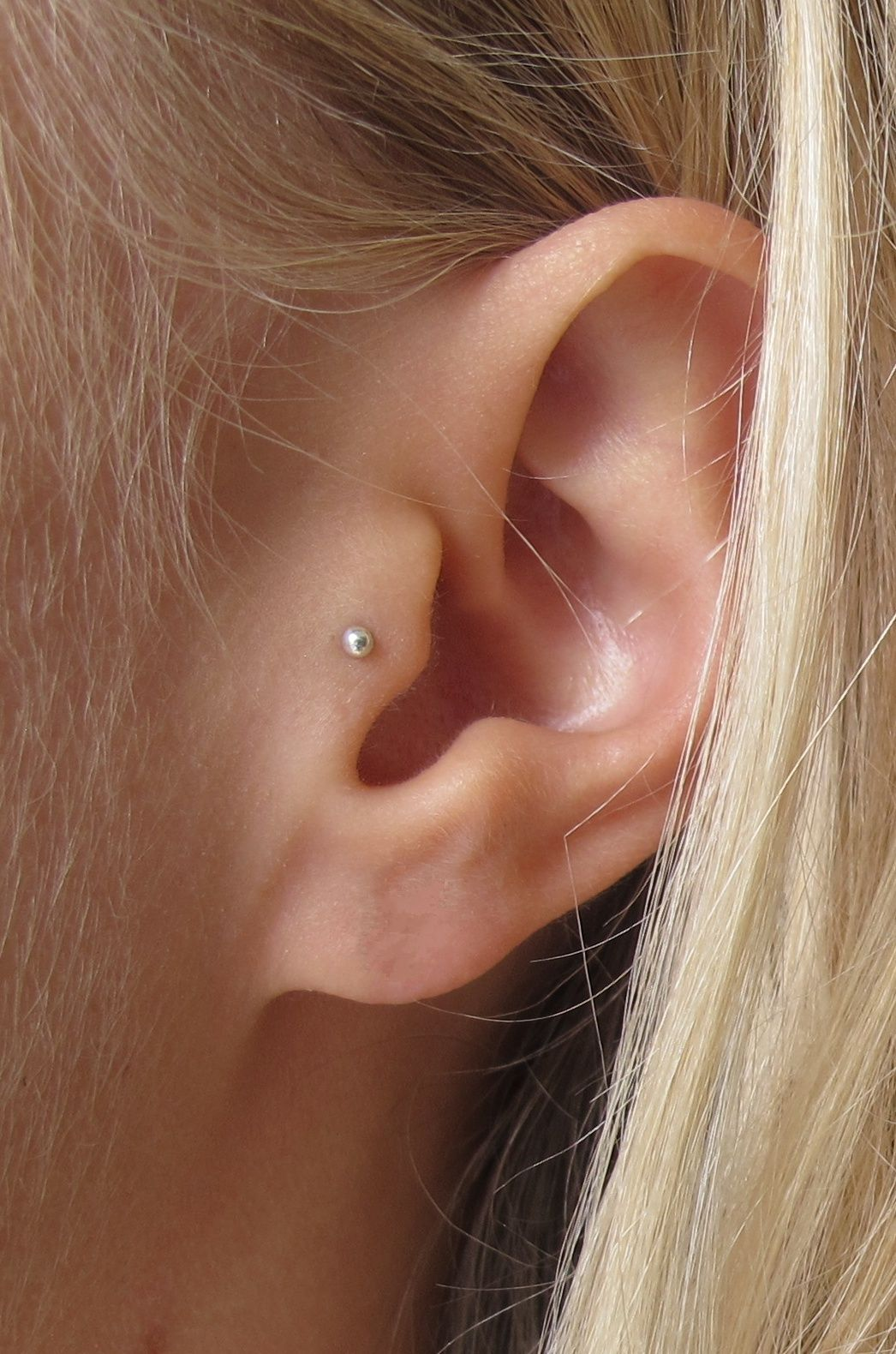 Wild Fawn Jewellery - Ethical and eco friendly minimal jewellery — Very Delicate Cartilage Stud