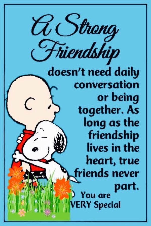 Pin Von Diesam Auf Freunde Snoopy Zitate