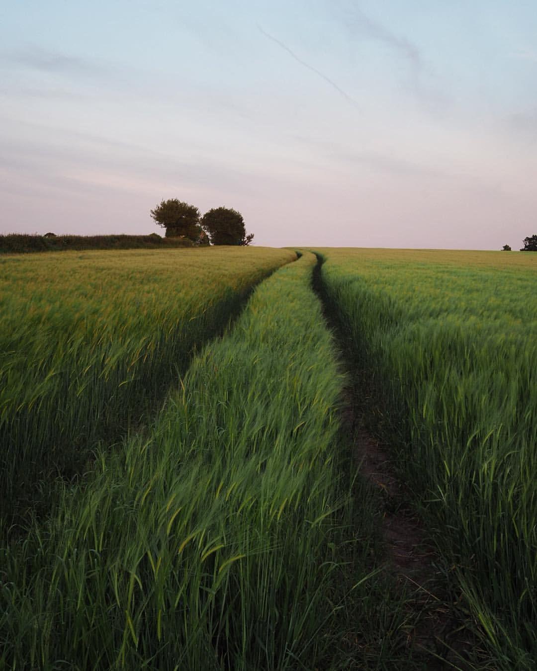 Love These Evenings Landscape Landscape Photography Nature Photography