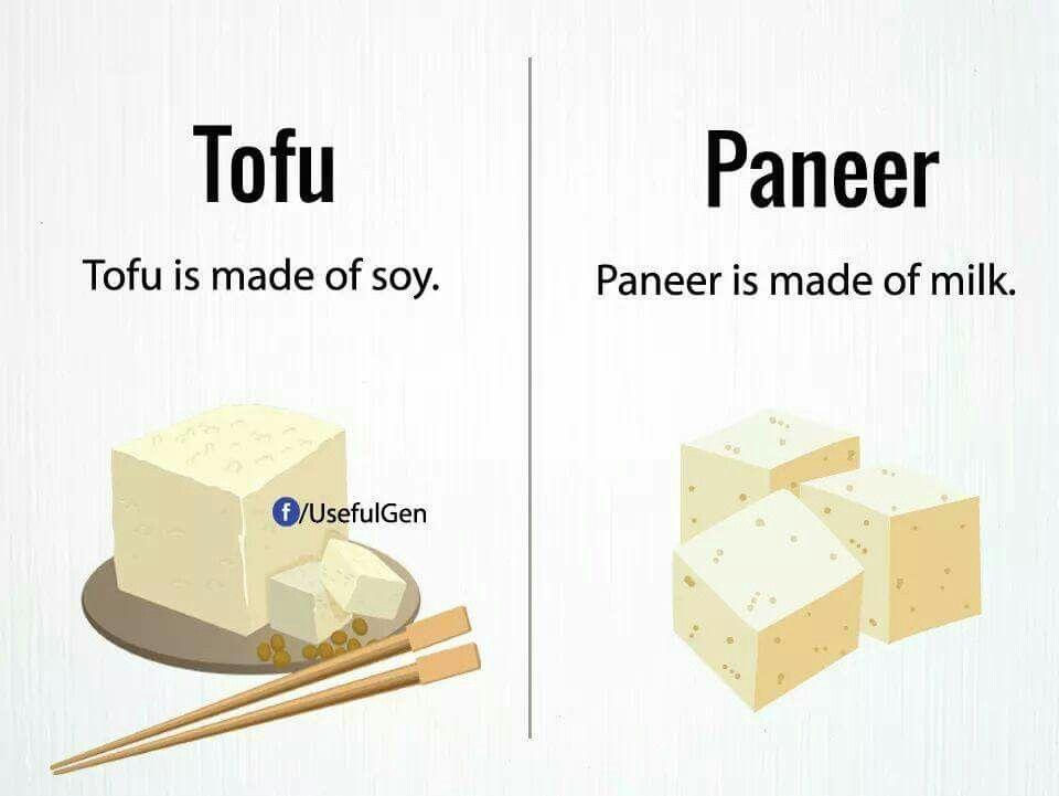 Tofu vs paneer | lifelong learning | English vocabulary