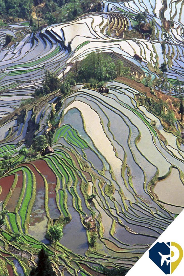 Las Terrazas De Arroz De Yuanyang En China Las Tecnicas De Cultivo Del Condado De Yuanyang Han Creado Un Paisaje Q Photo Adventure Is Out There The Real World