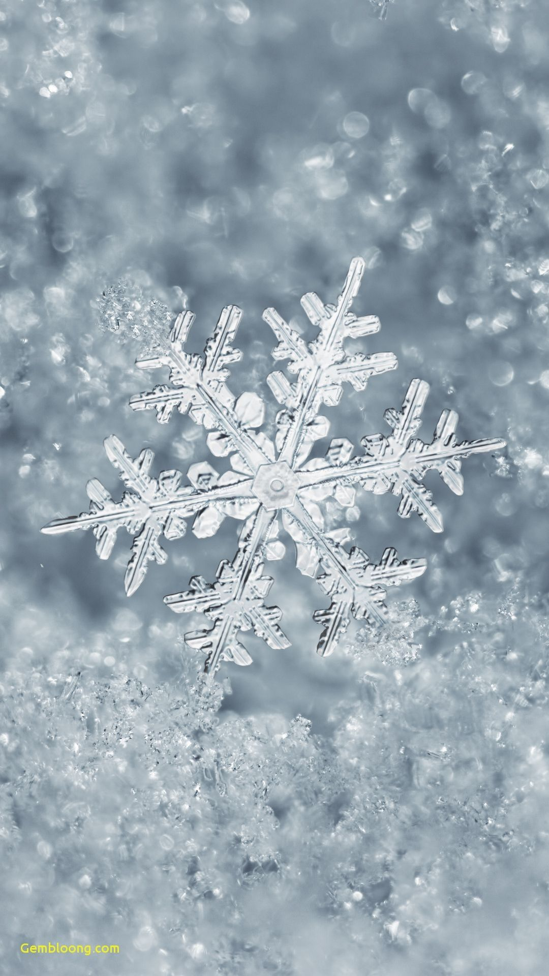 Wallpapers for iPhone Christmas Elegant Ice Snowflake