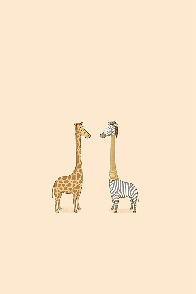 Cute Giraffe Yellow Animal Minimal Iphone 4s Wallpaper Download Iphone Wallpapers Ipad Wallpapers One Stop Download Zebra Wallpaper Giraffe Giraffe Pictures