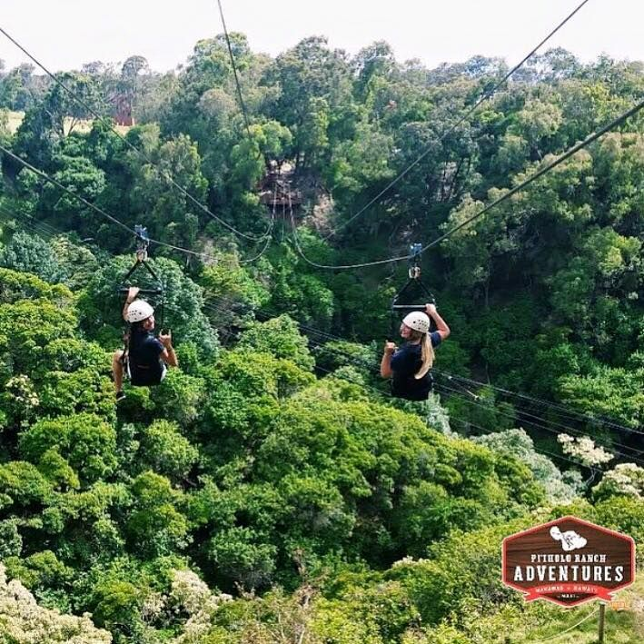 We Call This Pose The Look Back At Piiholo Zipline We Do All The Work For You We Even Take Pictures For You Hawaii Vacation Ziplining Maui Hawaii Vacation