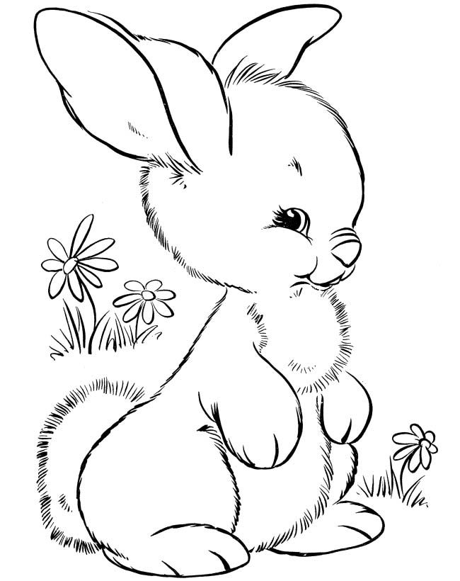 Cute Little Rabbit Coloring Pages Easter Bunny Colouring Animal Coloring Pages Bunny Coloring Pages
