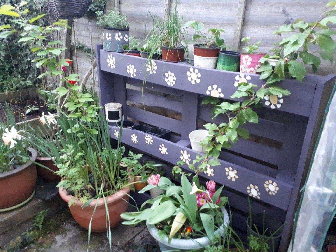 Dans Mon Petit Jardin De Boheme Francoise Boho Garden Plants