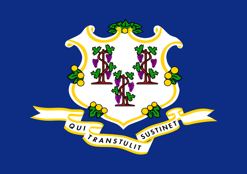 Flag Of Connecticut Us States Flags Connecticut History Flag