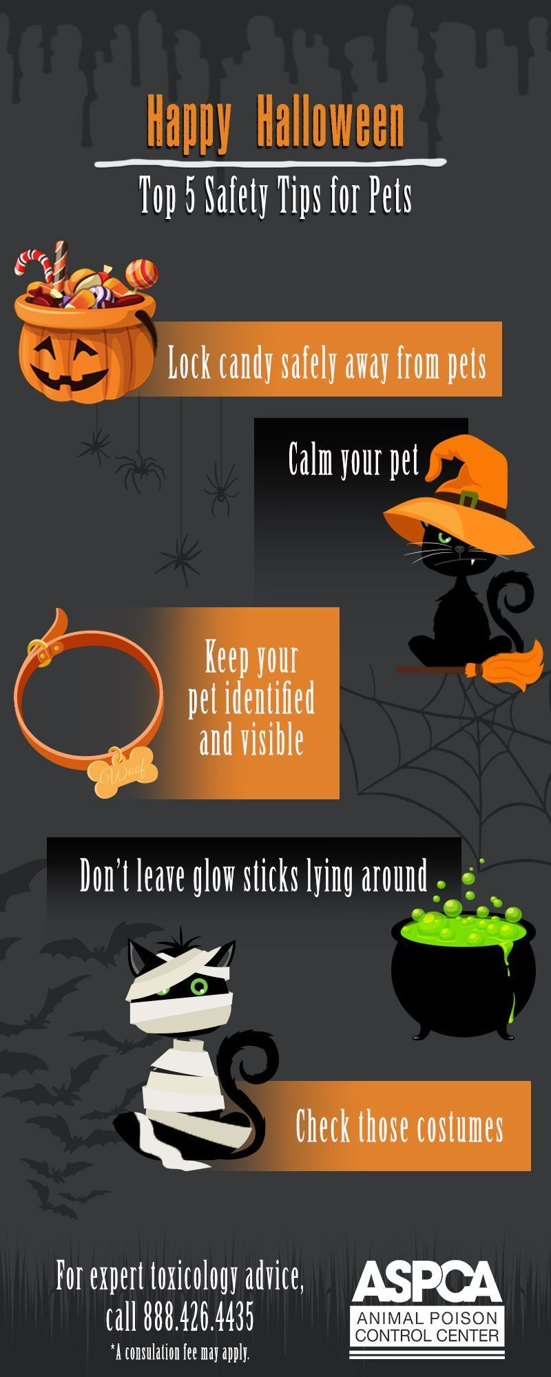 Tips on Costumes, Candy and Celebrating Safely With Your