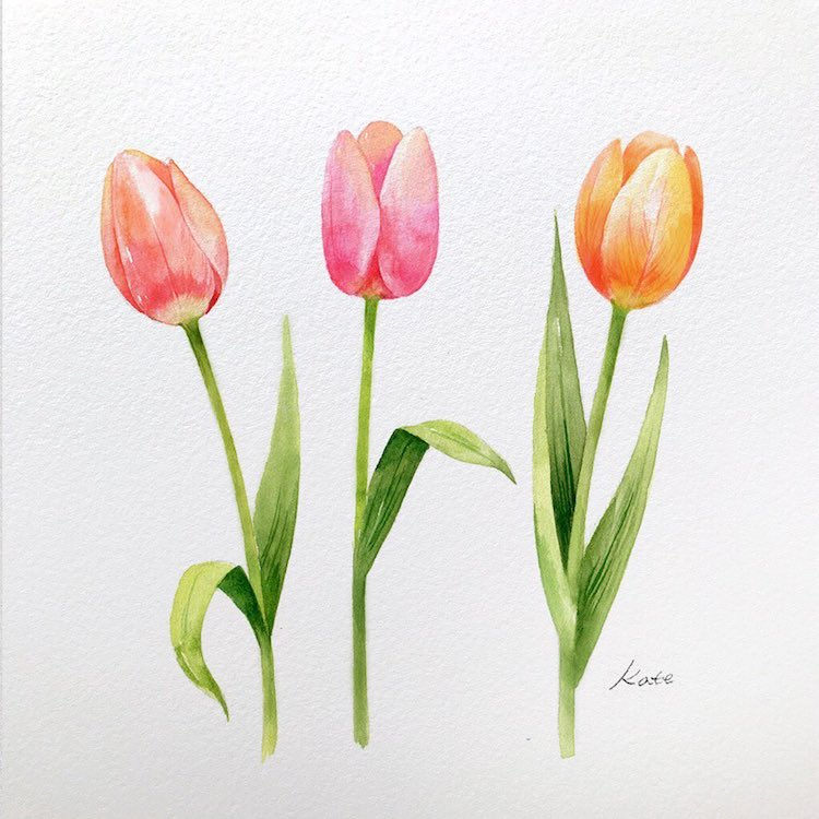 Artist Reveals How To Draw Perfect Flowers In 3 Simple Steps Flower Drawing Flower Drawing Tutorials Tulips Art