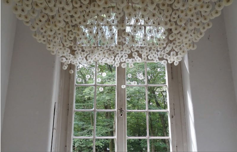 suspended dandelions