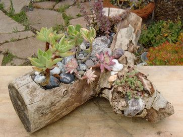 Eco - Driftwood Planters - eclectic - indoor pots and planters - los angeles - Artistic Glass Innovations