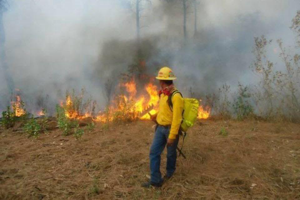 De acuerdo con el titular de la SEMARNACC, Ricardo Luna García, se está reforzando la vigilancia y la lucha directa a los incendios forestales para detenerle el paso al fuego ...