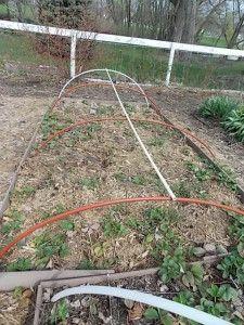 Raised Bed Garden Hoops