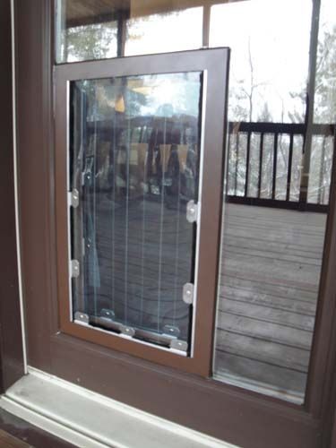 In The Glass Maxseal Pet Door Through Glass Pet Door Glass Dog