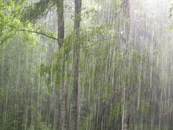 Very little beats a downpour when you don't have to leave the house... | Sound of rain. Rain storm. Love rain