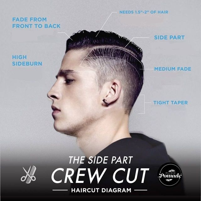 Astounding Trendy Hair Styling For Men With Undercut 2016 Infographic Hairstyle Inspiration Daily Dogsangcom