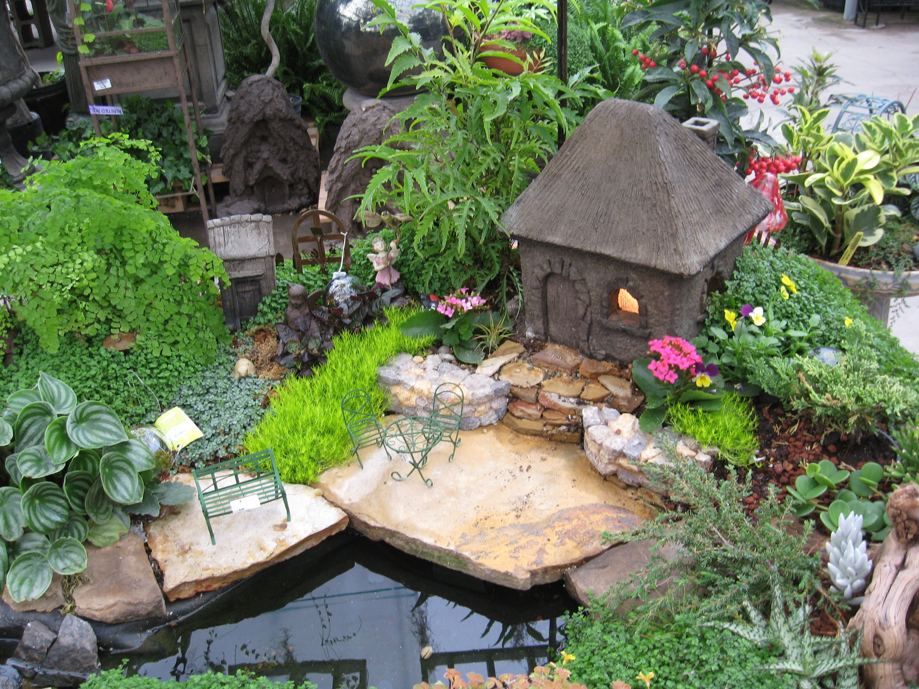 Mini Garden With Pool And House Fairy Gardens Pinterest