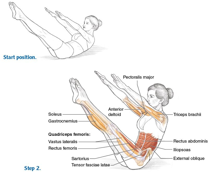 Abdominal Work for Movement and Stabilization - Pilates Anatomy ...