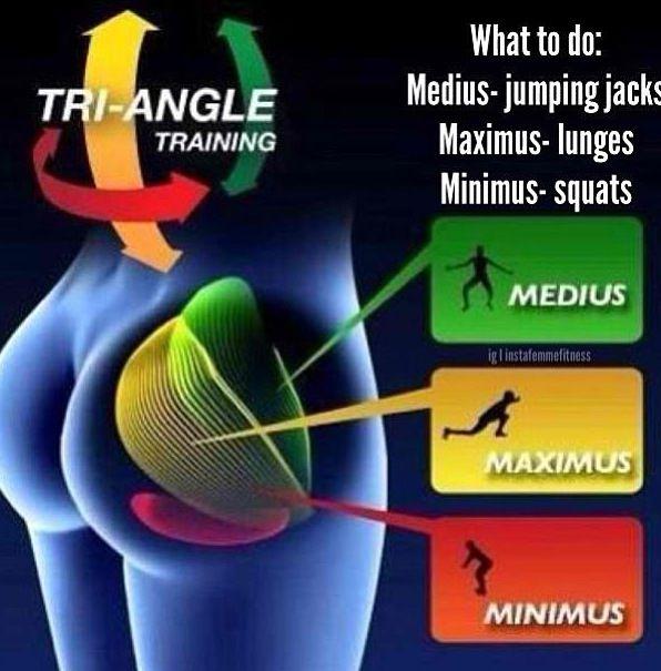 3partie fessieres | Anatomie: muscular system | Pinterest | Butt ...