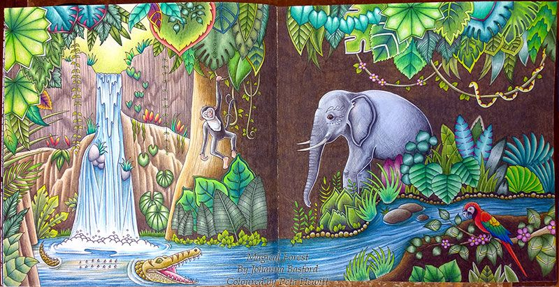 Mj Doublespred01 Sml Jpg 800 411 Magical Jungle Johanna Basford Coloring Book Art Joanna Basford Coloring