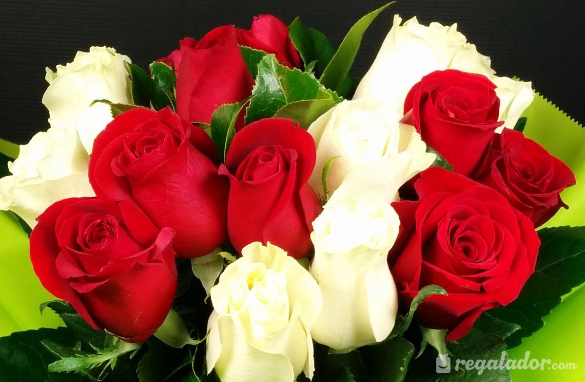 Fondo De Pantalla Flores Blancas En Fondo Rosa: Imagenes De Flores Rojas Y Blancas Para Fondo De Pantalla