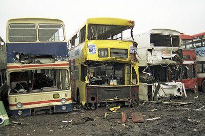 Scrapyard Buses Abandoned Cars Bus Coach Bus